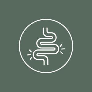 gut-healthprogram